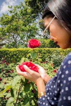 flower-park-in-hamamatsu
