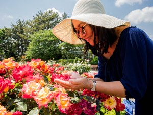 things to admire about hamamatsu flower park