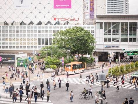 View from Starbucks by Shibuya Station