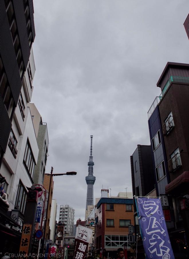 Tokyo Sky Tree Sensoji Temple