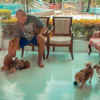 Dream World Bangkok Thailand