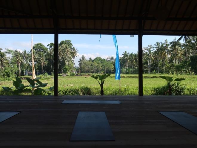 Ubud-Villas-Bali